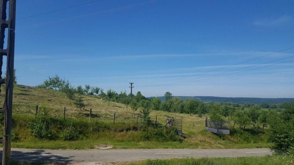 Vanzare  terenuri constructii  5700 mp Maramures, Coruia  - 1000 EURO