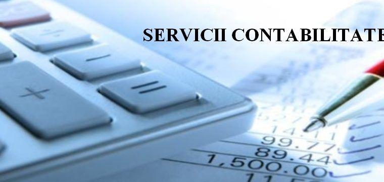 Expert contabil autorizat cu experienta ofer servicii contabilitate