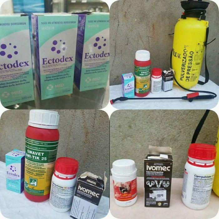 Desinfestação e vendas de acessórios anti parasitas