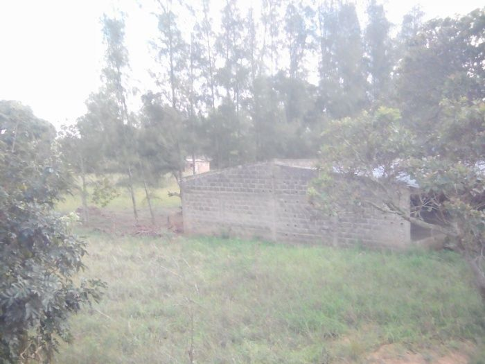 Vendo casa tipo 3, num espaço de 2 hectares com capoeiras e dependênci