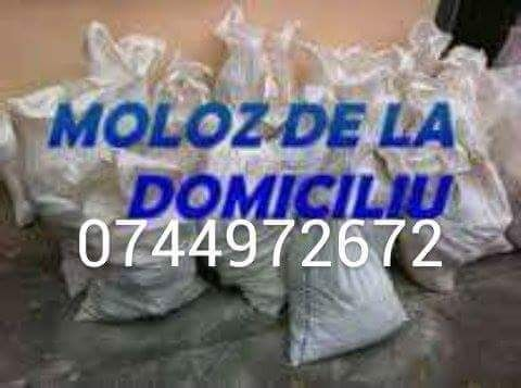 Moloz/moluz Galati