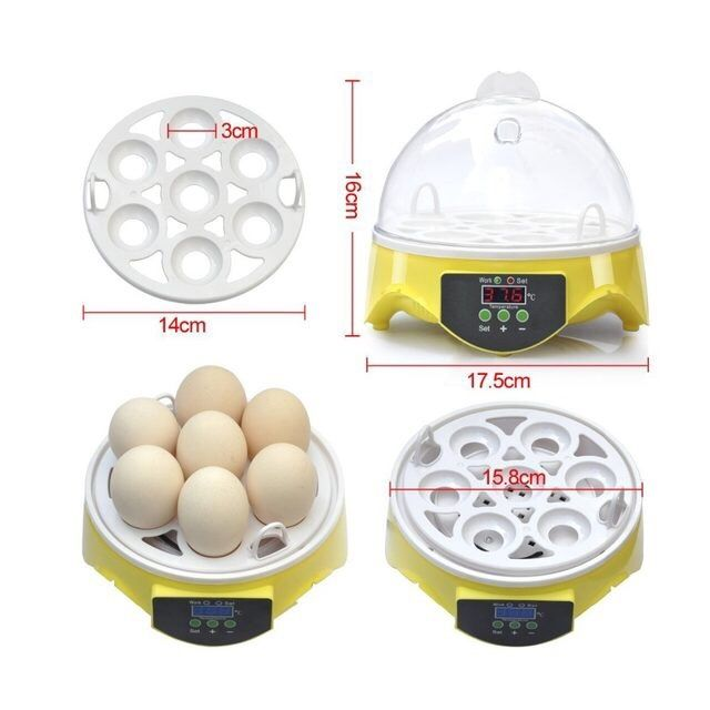 Инкубатор за 7 яйца люпилня пилета птичи пиле инкобатор яйце гр. Димитровград - image 2