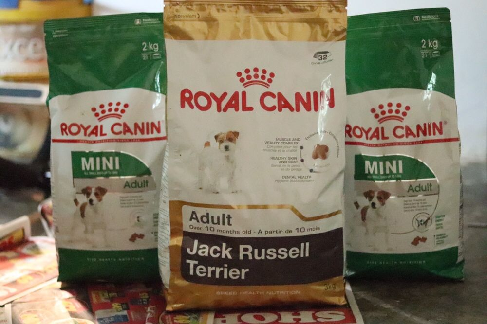 Royal canin Mini adult Sommerschield - imagem 1