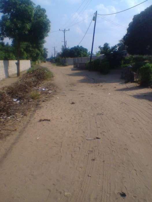 TSALALA-Zona localizada, agua,luz,escola,hospital,estrada,15/30PARCLDO Machava - imagem 3