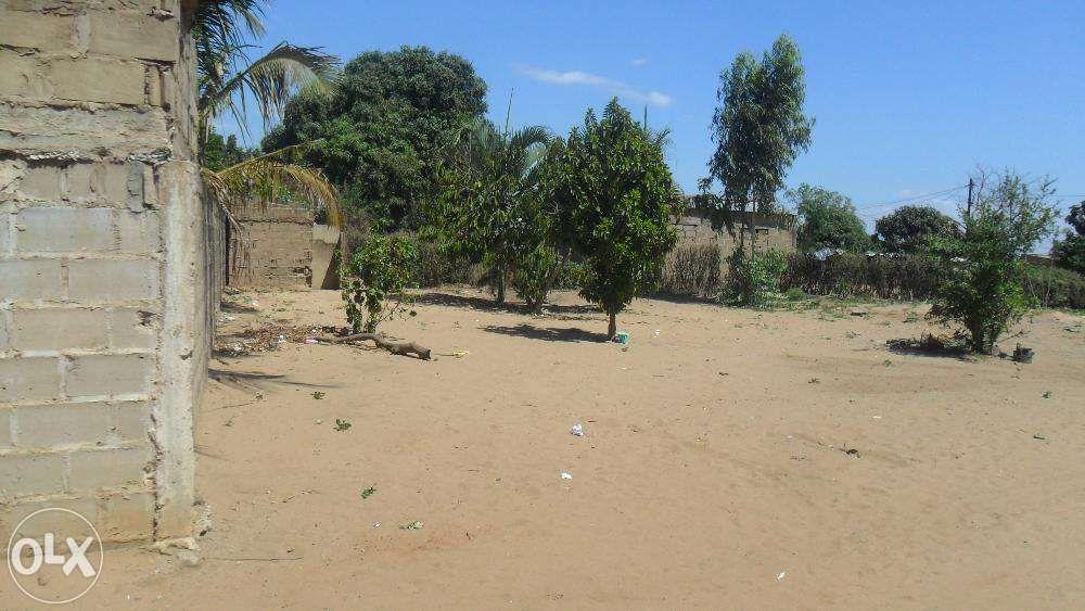 vende-se propriedade no kongolote perto da ustm agricultura/n1- molumb Maputo - imagem 3