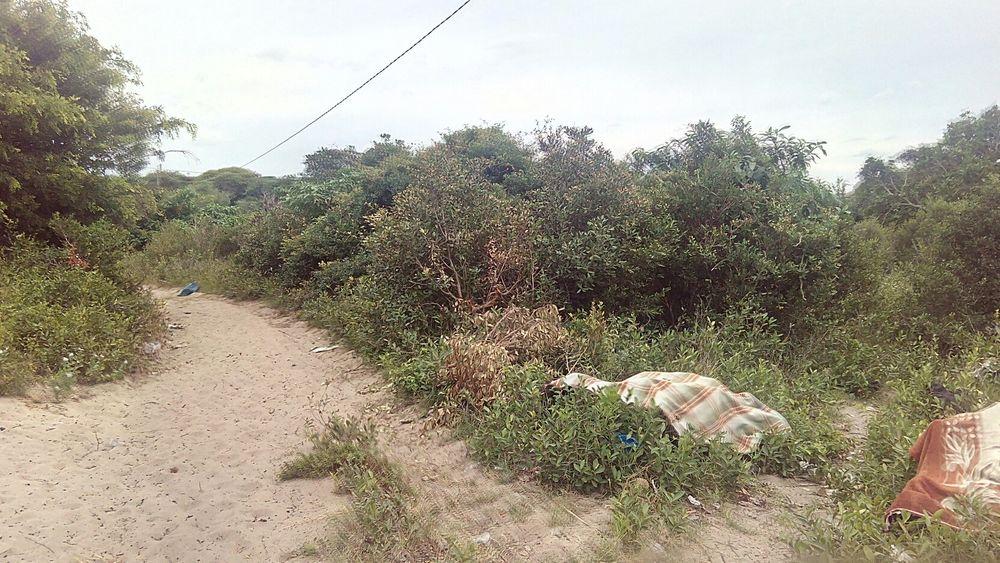 Trespassa-se terreno de 1hectare na Praia de Macaneta