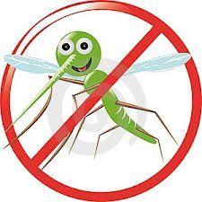 Plase insecte pe balamale si tip rulou