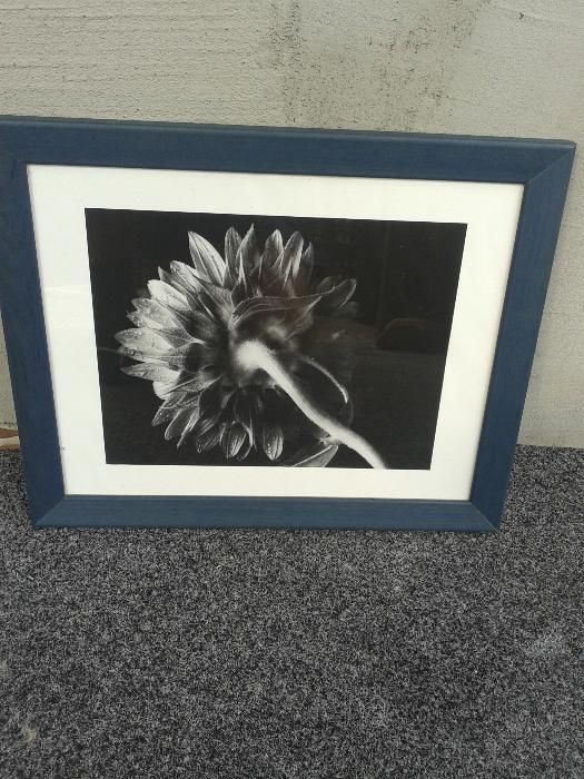 Tablou cu floare