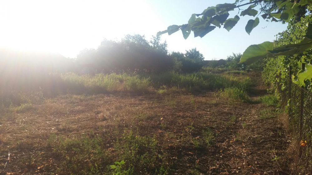 Vanzare  terenuri constructii Calarasi, Curcani  - 11000 EURO
