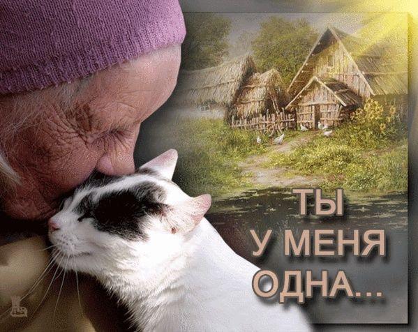 """Болтливая Мышеловка Марфуша от МБфондаЗЖ """"Переведи Взгляд"""""""