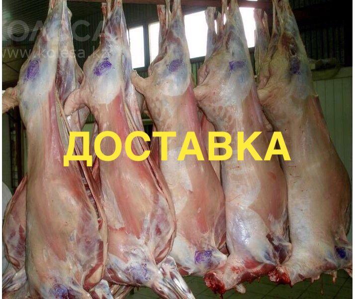 Доставка мяса (баранина) Павлодар-Астана
