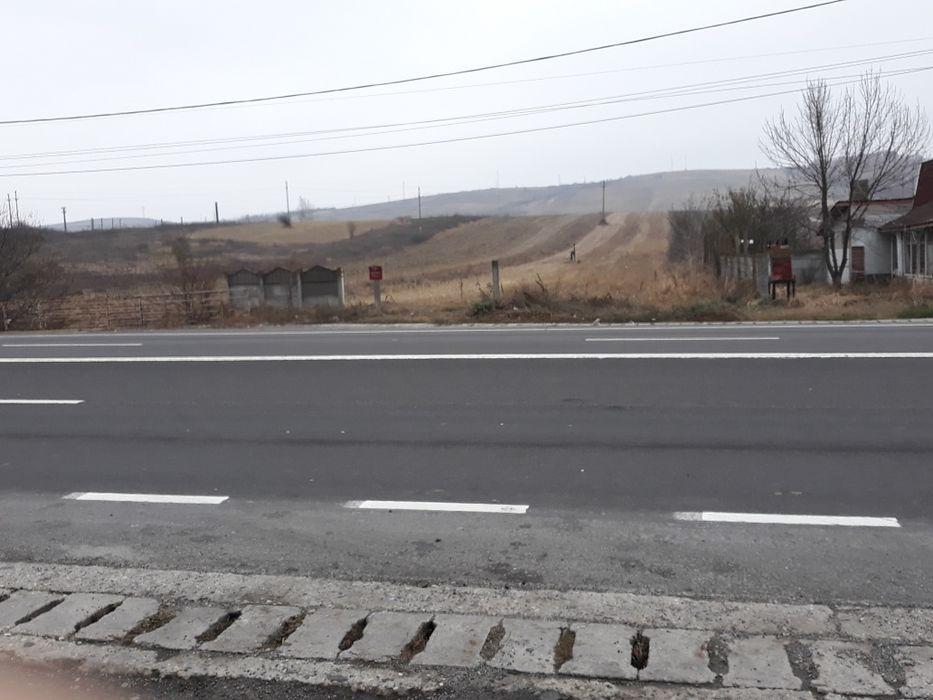 Inchiriere  terenuri constructii  4200 mp Dolj, Bradesti  - 0 EURO lunar