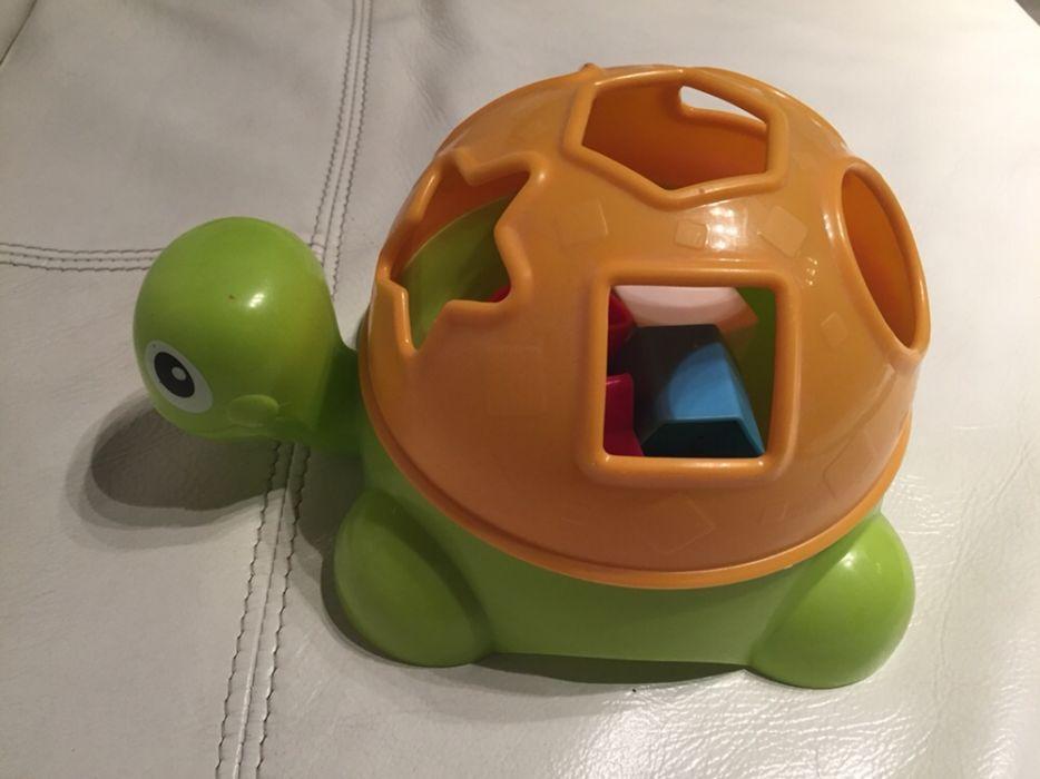 Образувателна костенурка