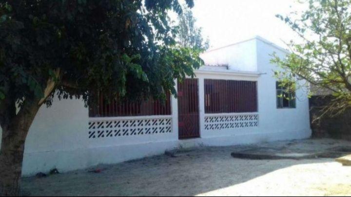Casa T3 com quintal bem situada