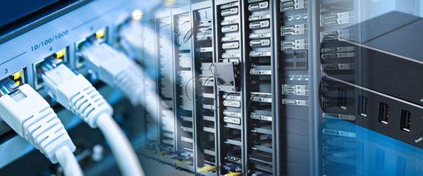 Primavera 8 Instalação em Rede