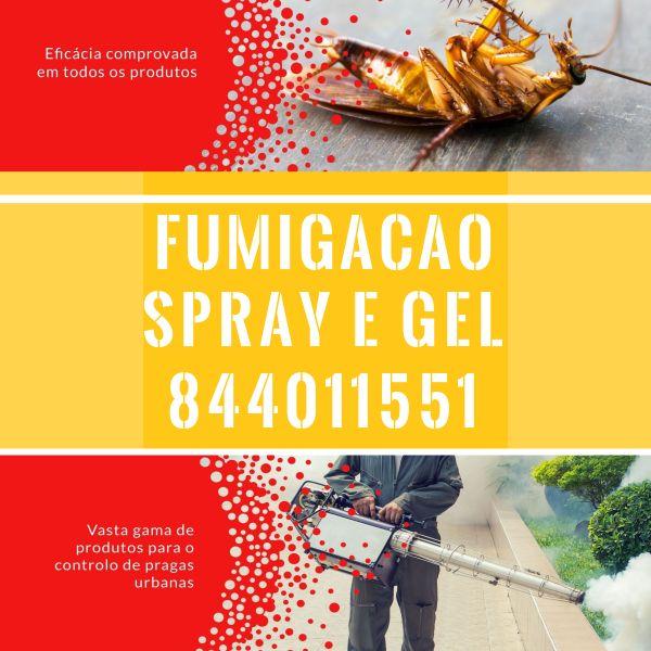 Combate e prevenção de todo o tipo de pragas!