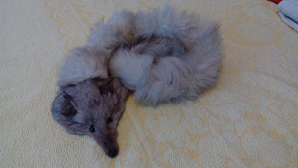 Продавам шал/яка от сребърна лисица - 100% естествена кожа