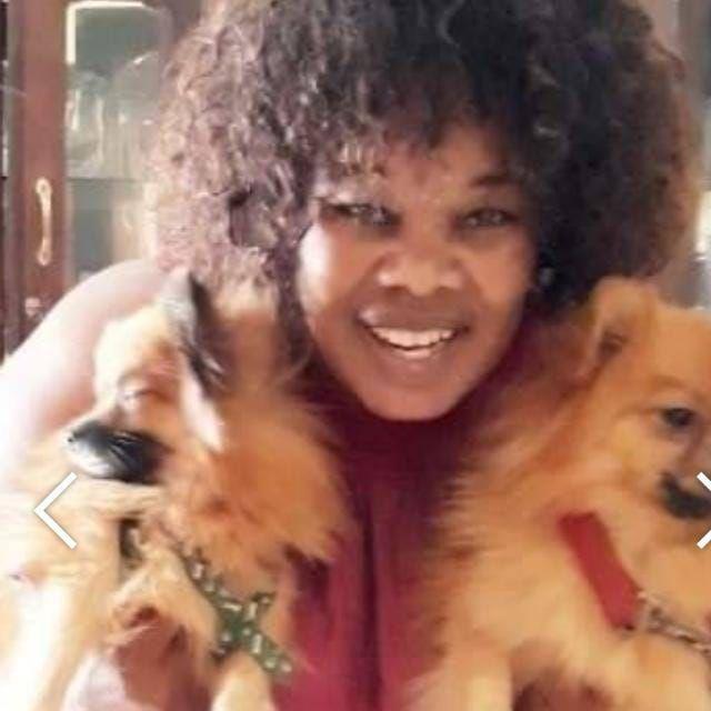 um casal de cachorros de 2 meses Cidade de Matola - imagem 4