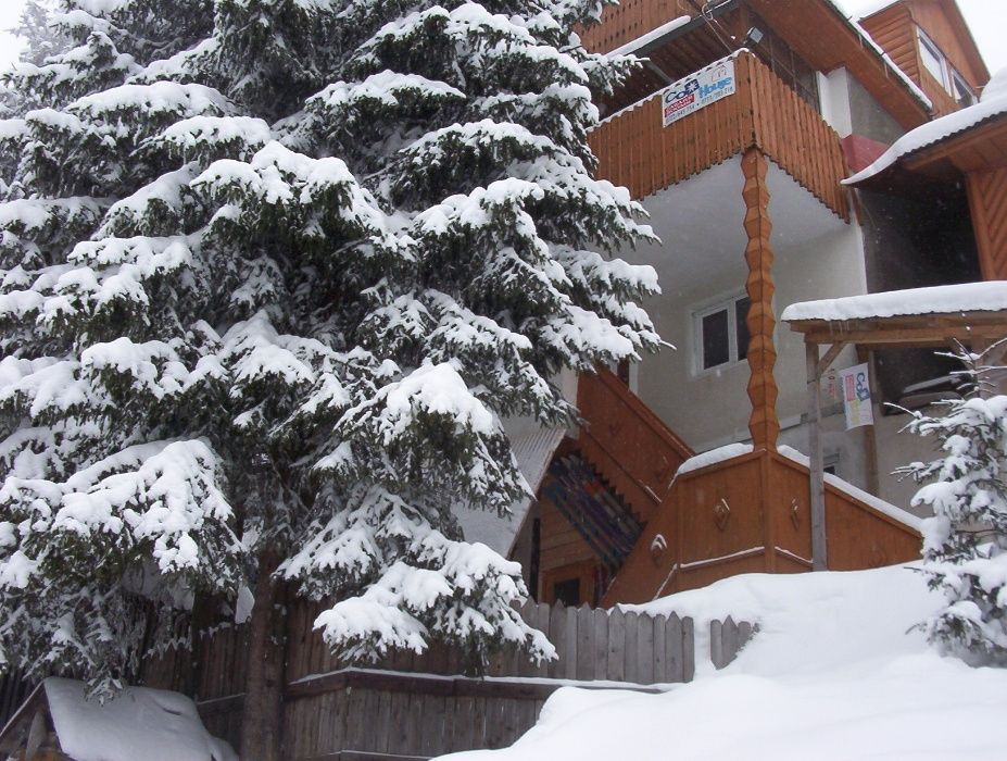 Vanzare  casa  5 camere Hunedoara, Petrosani  - 80000 EURO