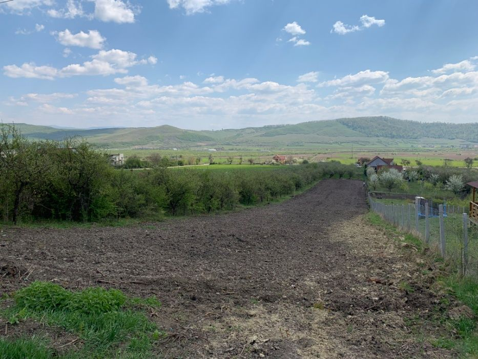 Vanzare  terenuri agricol Bistrita Nasaud, Viisoara  - 50000 EURO