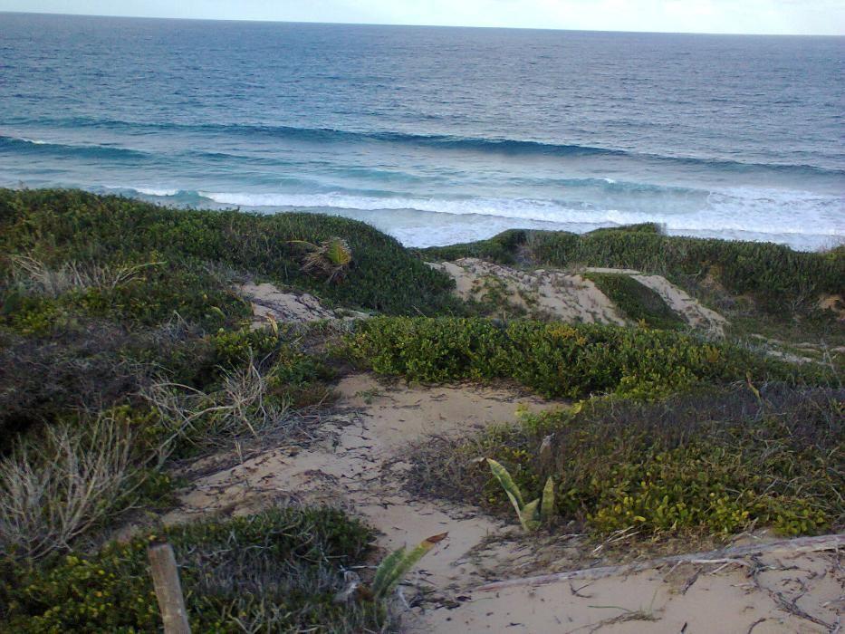 A venda na praia da Barra com vista ao mar