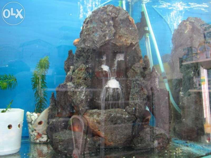 Декорация за аквариум пясъчен водопад направен от вулканични скали гр. София - image 1