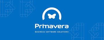 Software Primavera - todos os pacotes que necessitar