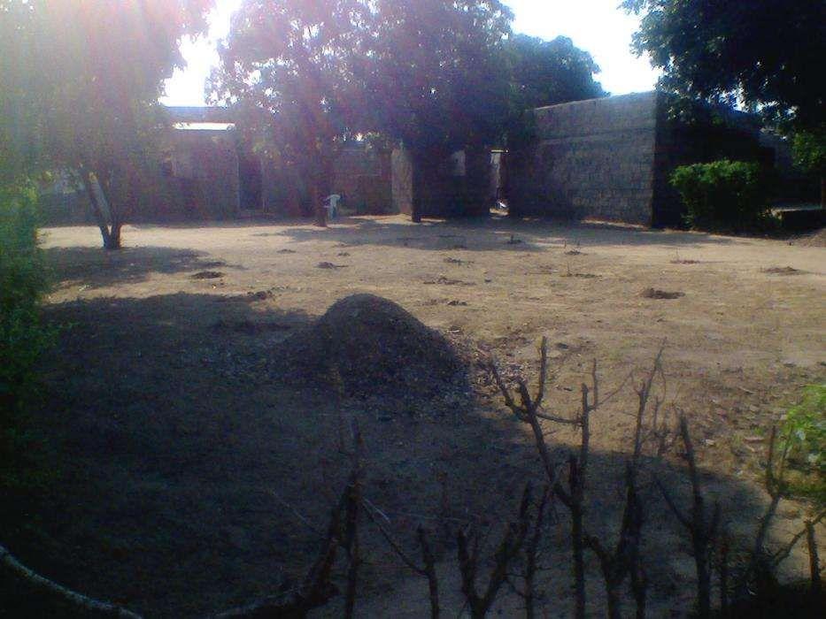 TSALALA-Zona localizada, agua,luz,escola,hospital,estrada,15/30PARCLDO Machava - imagem 5