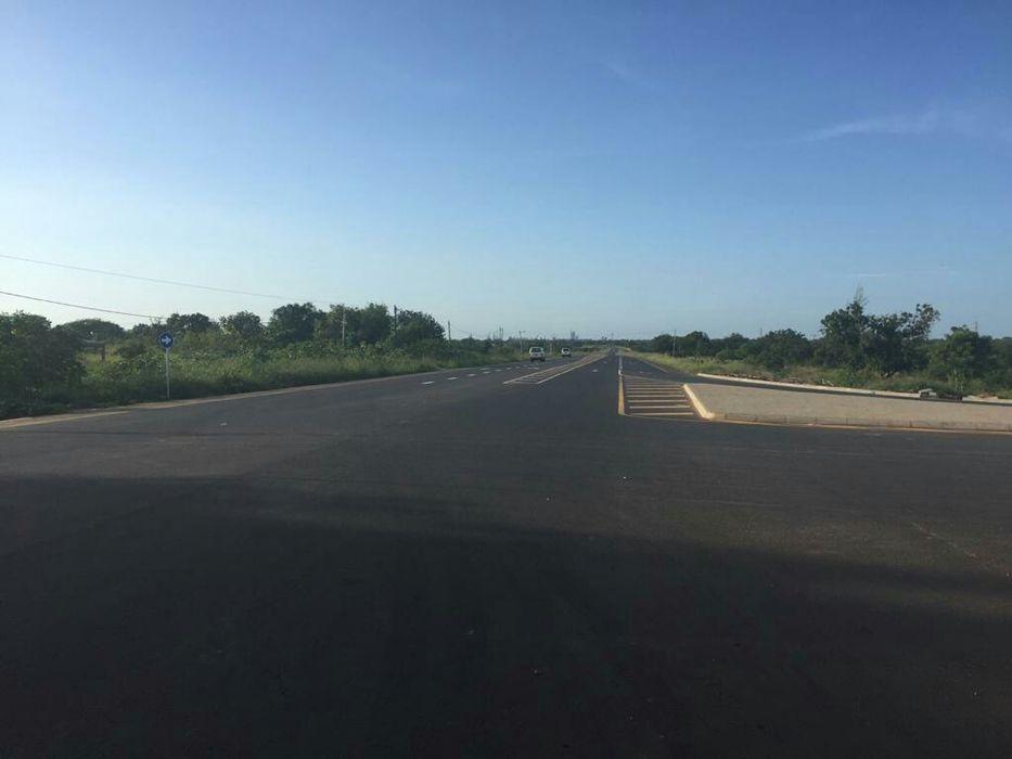 300 hectares em Matutuine