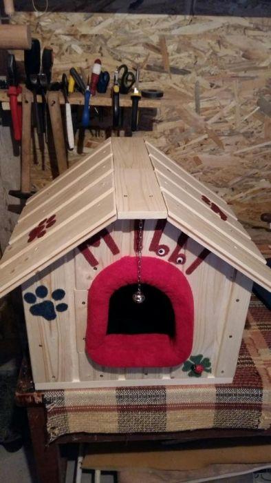 Casuta pentru catelusi si pisici Pitesti - imagine 1