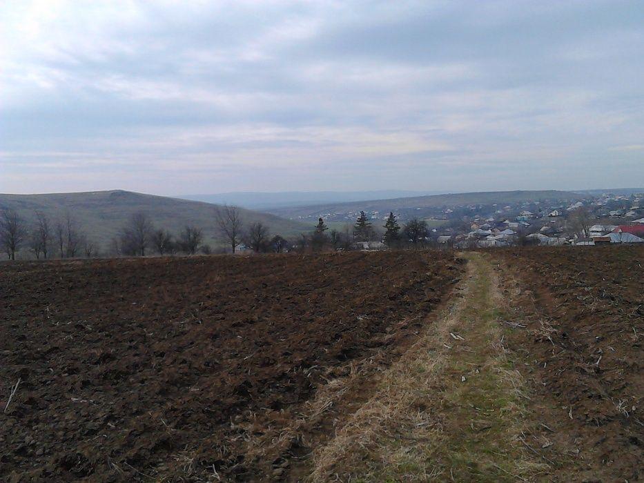 teren intravilan 3150 mp Dumești - Iași, între case, 3.99 € / mp, neg