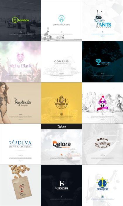 LOGO Design - pasiune; experienta; calitate; clienti multumiti