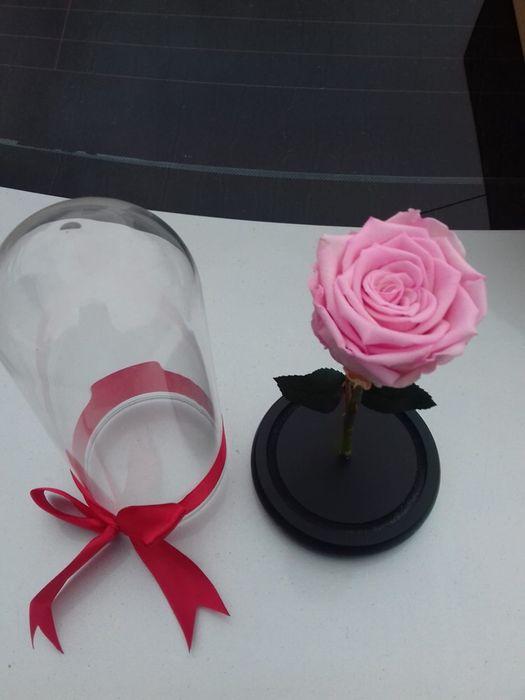 Cadou zile onomastice trandafir criogenat conservat Bucuresti - imagine 2