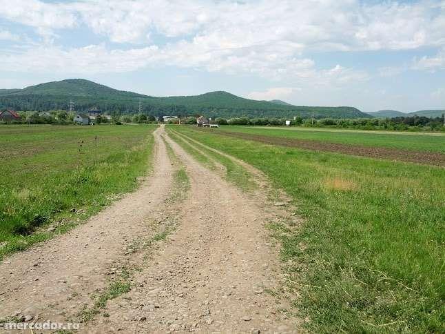 Vanzare  terenuri agricol  7000 mp Bistrita Nasaud, Sieu-Magherus  - 0 EURO