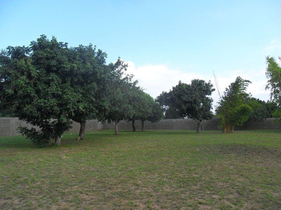 vende-se propriedade na n1 perto a entrada da facim Bairro Central - imagem 8