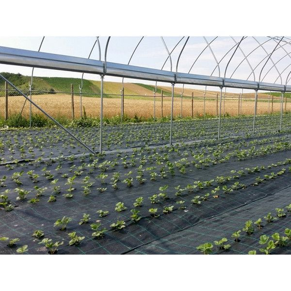 AGROTEXTIL antiburuieni verde 90 gr/m2 , mulcire- BELGIA Bucuresti - imagine 1