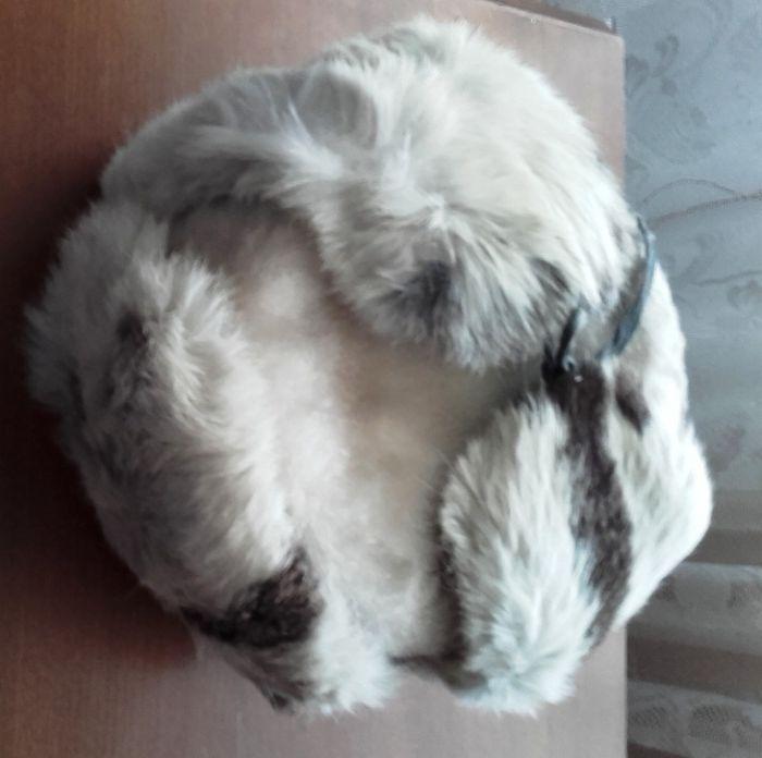căciulă alb-negru, iepure, pentru copii