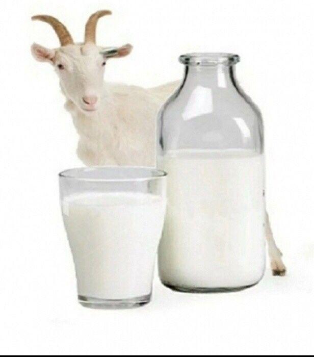 Козье молоко на самал 3!