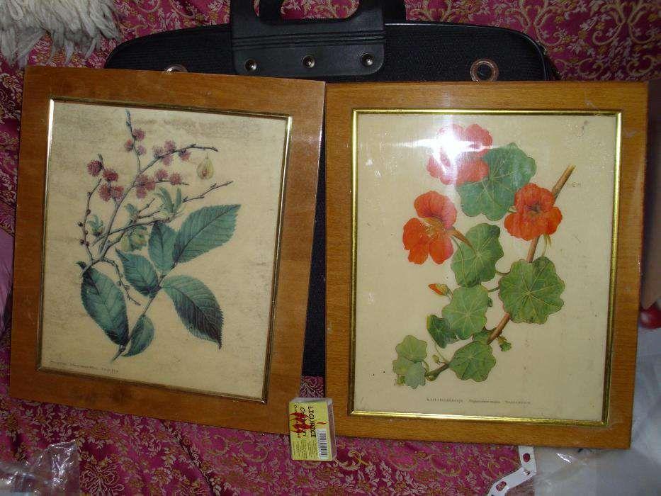tablouri fotografii pe lemn lacuite