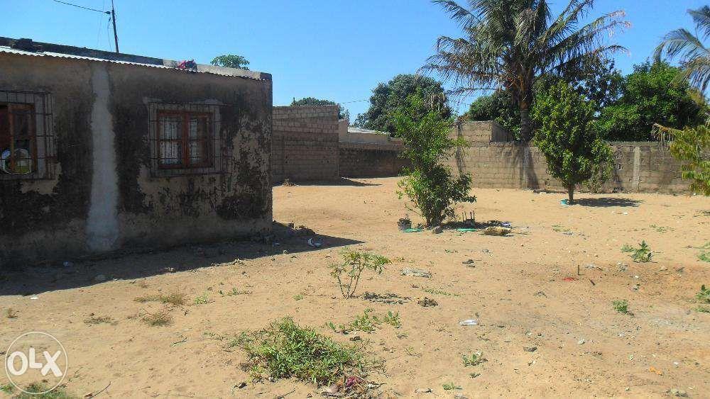 vende-se propriedade no kongolote perto da ustm agricultura/n1- molumb Maputo - imagem 8