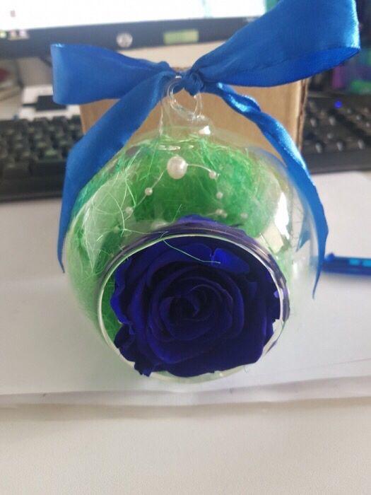 Trandafir criogenat conservat rezistent in timp