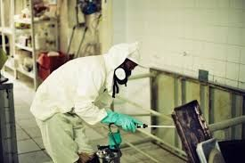 Prestamos Fumigações & Controlo de Pragas  Desinfecção & Desinfestação