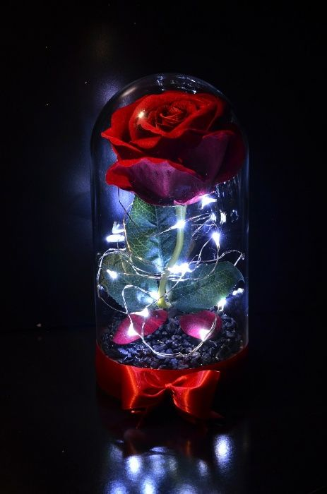 Червена роза в стъклен купол - вдъхновена от Красавицата и звяра