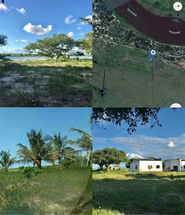 Big farm for sale, located in moamba an located saide of komati River