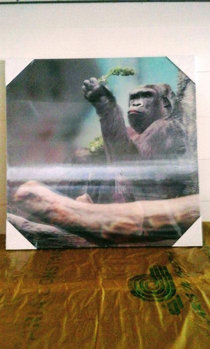 Decorațiune 3D de perete , Maimuță, 29x29 cm, 20 lei