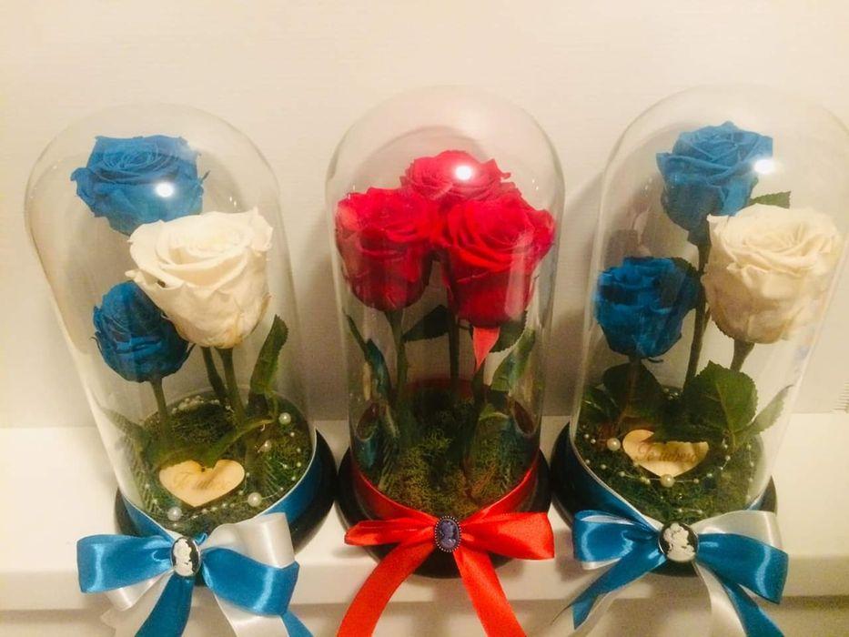 3 trandafiri criogenati