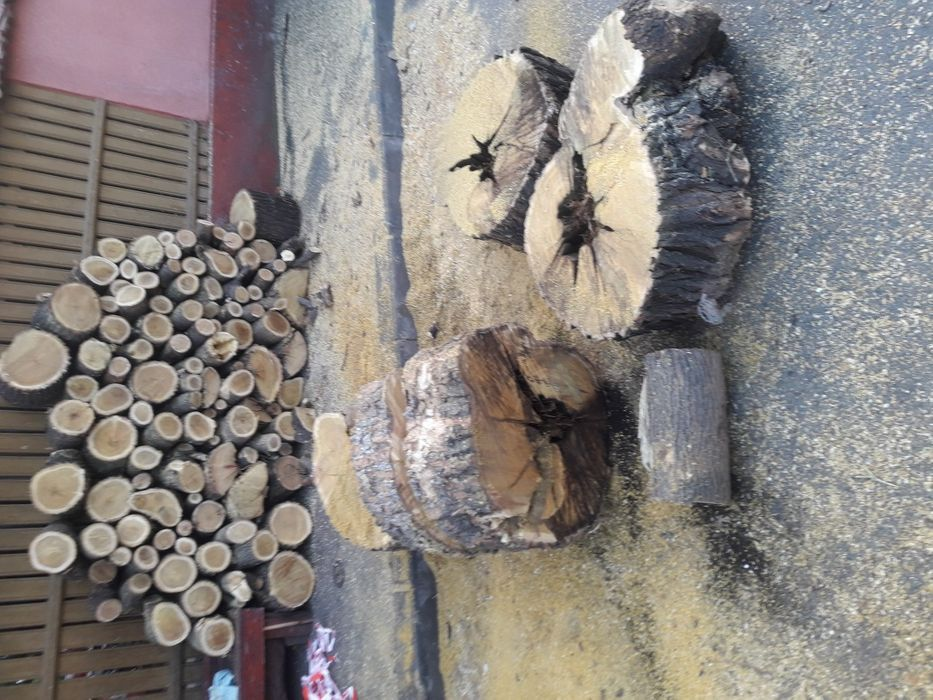 Taiere ( doborare )pomi, crengi, lemne , copaci, arbori