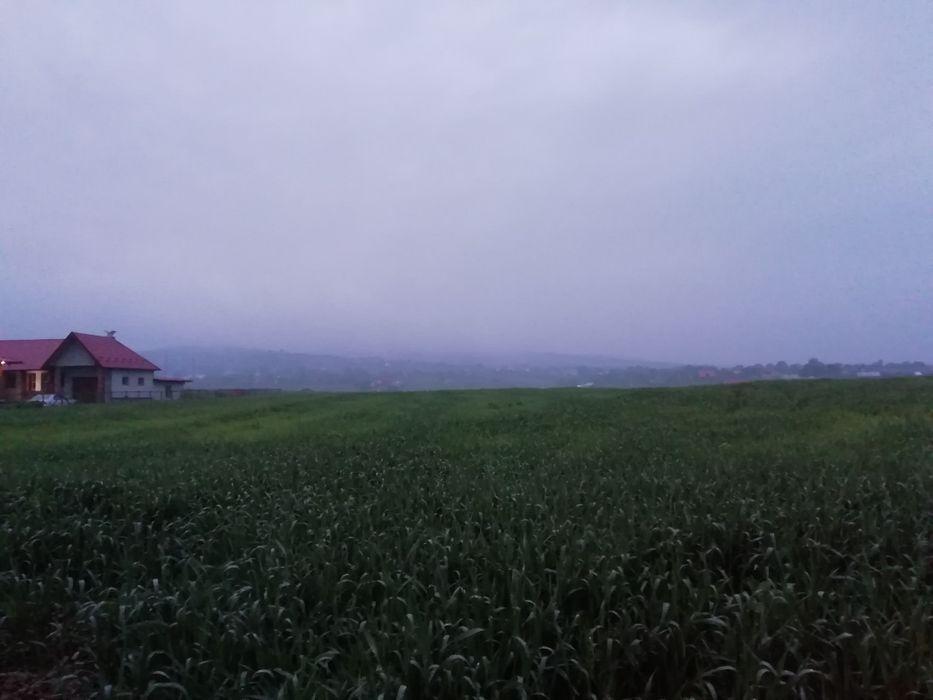 Vanzare  terenuri constructii  7000 mp Iasi, Mogosesti  - 0 EURO