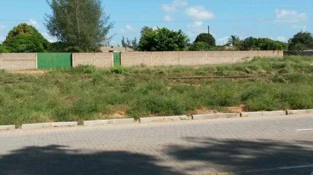 Albazine/Roma, quinta vedada com 50m x 100m=5000m2