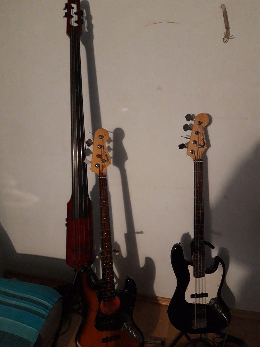 Chitare, Bass & Amplificatoare